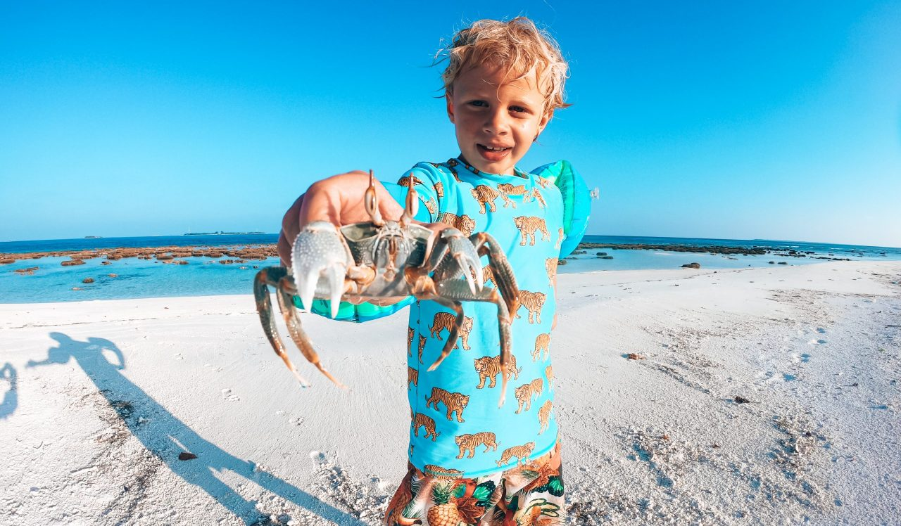 Boy exploring the beach and showing a crab he caught